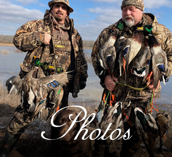 Arkansas duck hunting photos