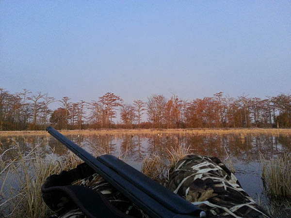 Arkansas Hunting Leases - Land Fields Timber